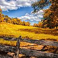 Autumns Pasture by Bob Orsillo