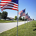 Avenue Of The Flags by Cricket Hackmann