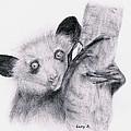 Aye-aye by Lucy D