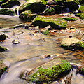 Babbling Brook by Frozen in Time Fine Art Photography