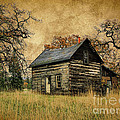 Backwoods Cabin by Steve McKinzie