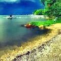 Balaton Lake Shore by Odon Czintos
