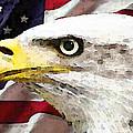 Bald Eagle Art - Old Glory - American Flag by Sharon Cummings