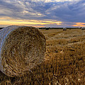 Baled Print by Scott Bean