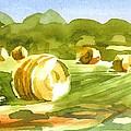 Bales In The Morning Sun by Kip DeVore
