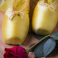 Ballet Shoes With Red Rose by Garry Gay