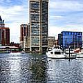 Baltimore Inner Harbor Marina by Olivier Le Queinec