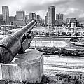Baltimore Inner Harbor Skyline by Olivier Le Queinec