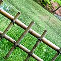 Bamboo fence Print by Brett Price