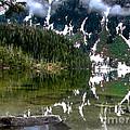 Baranof Lake by Robert Bales