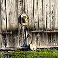 Barn Door And Banjo Mandolin by Bill Cannon
