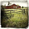 Barn In Field by Les Cunliffe