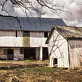 Barn Near Utica Mills Covered Bridge by Joan Carroll