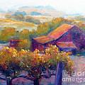 Barn Vineyard by Carolyn Jarvis