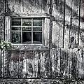 Barn Window by Joan Carroll