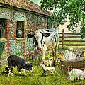 Barnyard Chatter by Trudi Simmonds