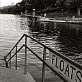 Barton Springs Pool In Austin by Kristina Deane