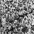 Baseball Fans In The Bleachers At Yankee Stadium. by Underwood Archives