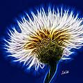 Basket Flower Inner Beauty by Nikki Marie Smith