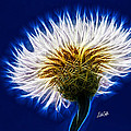 Basket Flower Inner Beauty Print by Nikki Marie Smith