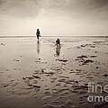 Beach Dog Print by Lee Martin