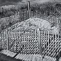 Beach Fence Bw by Susan Candelario