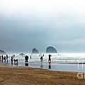 Beach Fun At Ecola  by Robert Bales