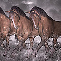Beach Horse Trio Night March by Betsy C Knapp