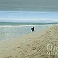 Beach Run Print by Juli Scalzi