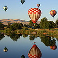 Beautiful Balloon Day by Carol Groenen