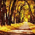 Beautiful Fall Day In Nebraska by Julie Hamilton