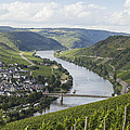 Beautiful Mosel rive...