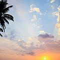 Beautiful Tropical Sunset by Nila Newsom