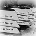 Belmar Marina Rowboats Print by Paul Ward