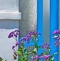 Belmont Shore Blue by Gwyn Newcombe