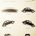 Benefits Of A Volkwagen by Georgia Fowler