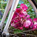 Bespoke Flower Arrangement by Rona Black
