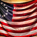 Betsy Ross Flag by Olivier Le Queinec