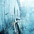 Bicycle In Blue by Stephanie Frey