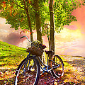 Bicycle Under The Tree by Debra and Dave Vanderlaan