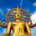 Big Buddha by Adrian Evans