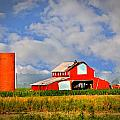 Big Red Barn by Marty Koch