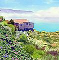 Big Sur Cottage by Mary Helmreich