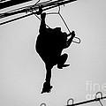 Bird On A Wire by Dean Harte