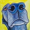Black Lab Nose by Roger Wedegis