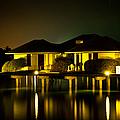 Black Starry Night In Tropics 3 by Jenny Rainbow
