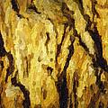 Blanchard Springs Caverns-arkansas Series 04 by David Allen Pierson
