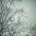 bleakly I Print by Priska Wettstein
