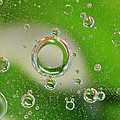 Blissful Bubbles 1