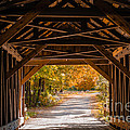 Blow-me-down Covered Bridge Cornish New Hampshire by Edward Fielding